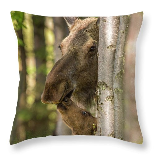 Adult Throw Pillow featuring the photograph A Kiss For Mom by Tim Grams