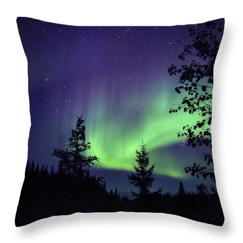 Yellowknife Throw Pillow featuring the photograph Aurora Borealis Above The Trees by Jiri Hermann