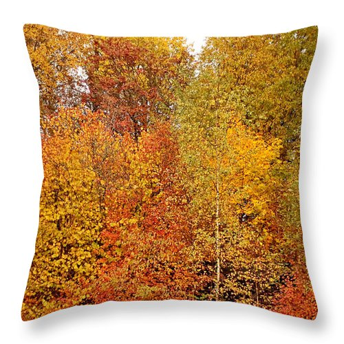 Colorful Throw Pillow featuring the photograph Autumn by Esko Lindell