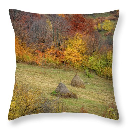 Landscape Throw Pillow featuring the photograph Autumn Forest by Evgeni Ivanov