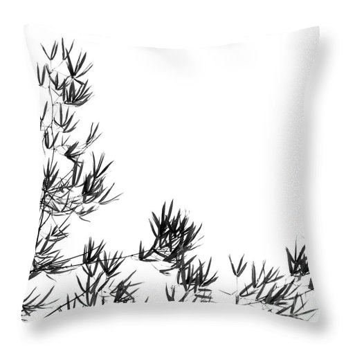 Asia Throw Pillow featuring the photograph Bamboo Tree And Leaves by Yali Shi