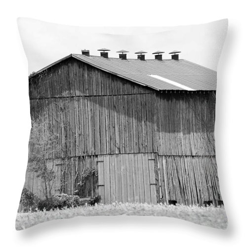 Monochrome Throw Pillow featuring the photograph Barn In Kentucky No 71 by Dwight Cook