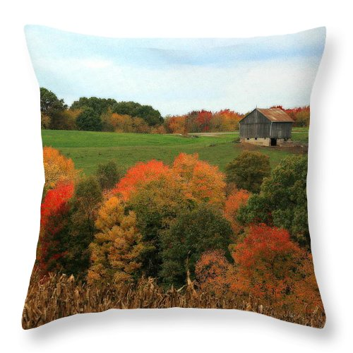 Affordable Throw Pillow featuring the photograph Barn On Autumn Hillside A Seasonal Perspective Of A Quiet Farm Scene by Angela Rath