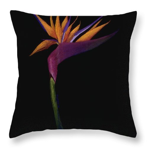 Flower Throw Pillow featuring the painting Bird of Paradise by Mary Erbert