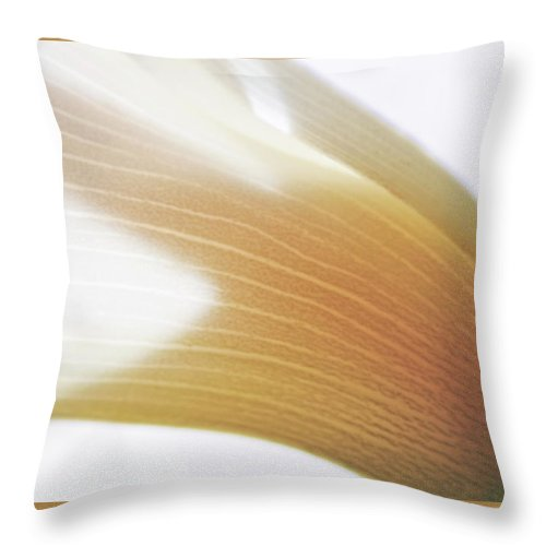 Flower Throw Pillow featuring the photograph Calla Lily by Thomas Morris