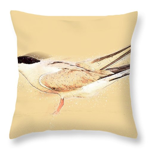 Common Tern Throw Pillow featuring the photograph Common Tern Sterna Hirundo by Alon Meir
