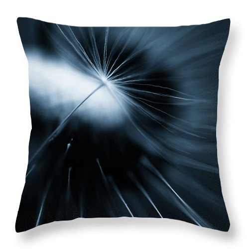 Plant Throw Pillow featuring the photograph Dandelion by Silke Magino
