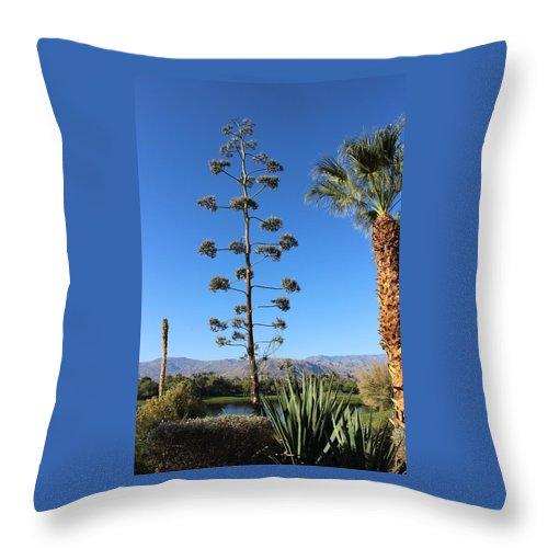 Throw Pillow featuring the photograph Desert Willow Golf Resort by Sally Falkenhagen