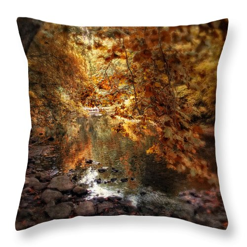 Nature Throw Pillow featuring the photograph Fall Reflected by Jessica Jenney