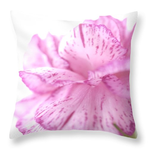 Pink Throw Pillow featuring the photograph Flower Abstract by Jessica Wakefield