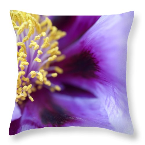 Purple Throw Pillow featuring the photograph Flower by Jessica Wakefield