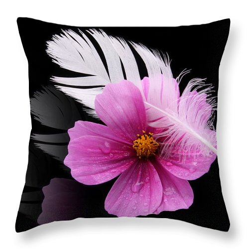 Fly Throw Pillow featuring the photograph Fly by Manfred Lutzius