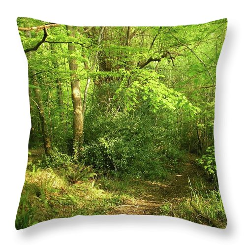 Landscape Throw Pillow featuring the photograph Hazelwood Co Sligo Ireland by Louise Macarthur Art and Photography