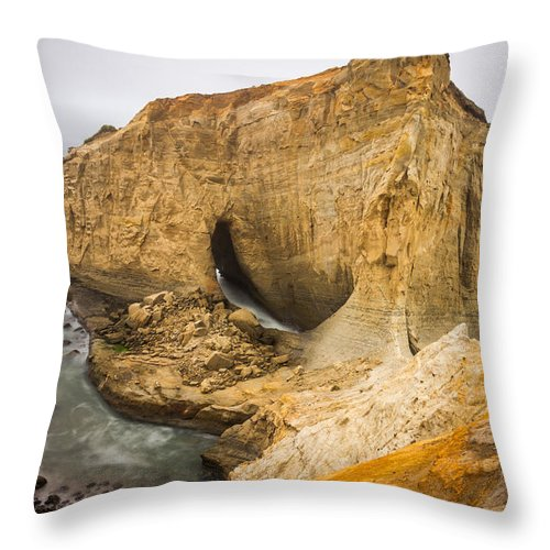 Oregon Throw Pillow featuring the photograph Joy by Calazone's Flics