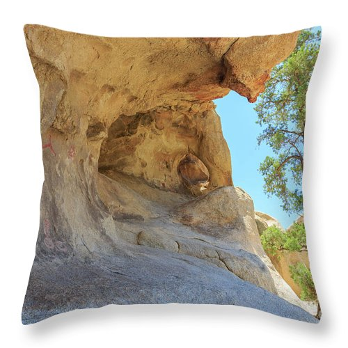 Joshua Tree National Park Throw Pillow featuring the photograph Landscape In Joshua Tree National Park by Chon Kit Leong