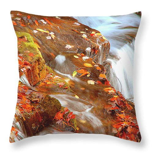 Mountain Stream Throw Pillow featuring the photograph Mountain Stream In Autumn by A Gurmankin