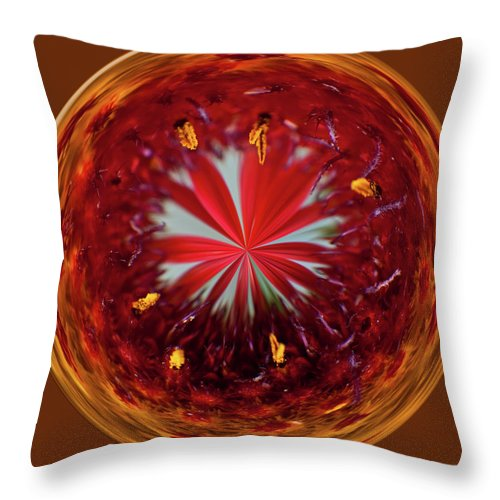 Flowers Throw Pillow featuring the photograph Orb Image Of A Gaillardia by Brenda Jacobs