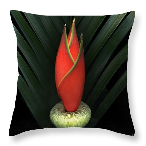 Scanart Throw Pillow featuring the photograph Palm Of Fire by Christian Slanec
