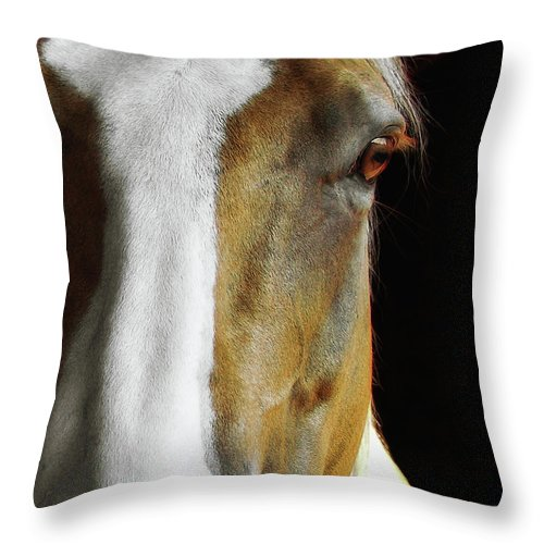 Horse Throw Pillow featuring the photograph Palomino by JAMART Photography