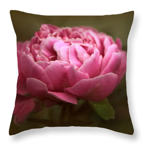 Peony Throw Pillow featuring the photograph Peony Blossom by Jessica Jenney