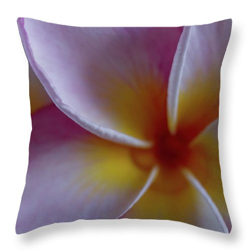 Plumeria Throw Pillow featuring the photograph Plumeria by Roger Mullenhour