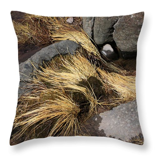 Rocks Throw Pillow featuring the photograph Remnants by Rick Rauzi