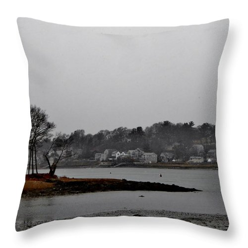 Throw Pillow featuring the photograph South Terrace by Scott Hufford