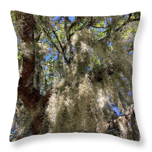 Spanish Moss Throw Pillow featuring the photograph Spanish Moss by Kathy Kirkland