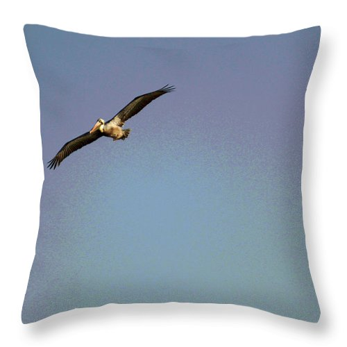 Pelican Throw Pillow featuring the photograph Spread Your Wings by Suzanne Gaff