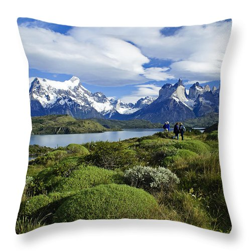 Patagonia Throw Pillow featuring the photograph Springtime In Patagonia by Michele Burgess