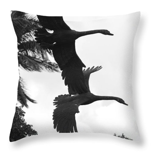 Black And White Throw Pillow featuring the photograph Stone Birds by Rob Hans