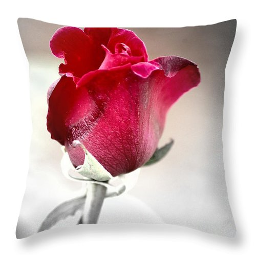Rose Throw Pillow featuring the photograph The Rose by Donna Bentley