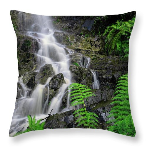 Tasmania Throw Pillow featuring the photograph Waterfall In Cradle Mountain by Rob D