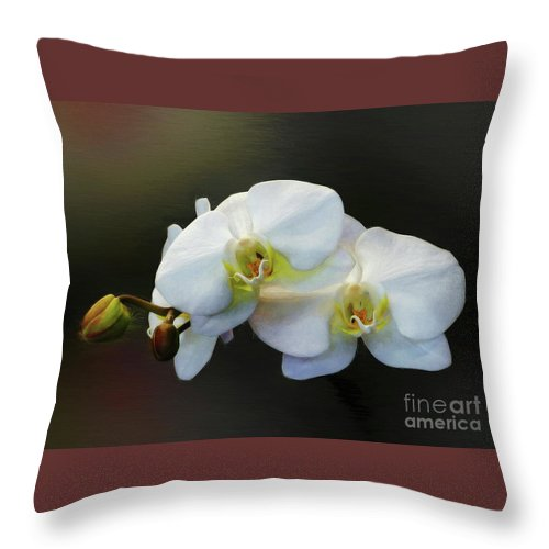 Doritaenopsis Orchid Throw Pillow featuring the photograph White Orchid - Doritaenopsis Orchid by Kaye Menner