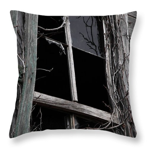 Windows Throw Pillow featuring the photograph Window by Amanda Barcon