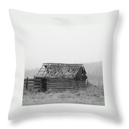 Lp Cover Art Throw Pillow featuring the photograph Your Band Name Here Lp Cover Art by Everett Bowers