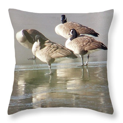 Canadian Geese Throw Pillow featuring the photograph 2004-geese On Ice by Martha Abell