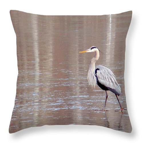 Birds Throw Pillow featuring the photograph 2007-heron On Ice Feb 2011 by Martha Abell