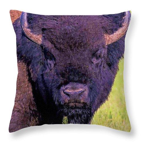 Animal Throw Pillow featuring the digital art Bison by Anna J Davis