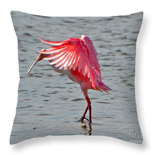 Blurred Throw Pillow featuring the photograph 2432 by Don Solari