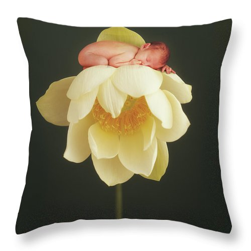 Water Lily Throw Pillow featuring the photograph Lotus Bud by Anne Geddes
