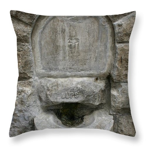 Fountain Throw Pillow featuring the photograph 29 Cups by Nina Fosdick