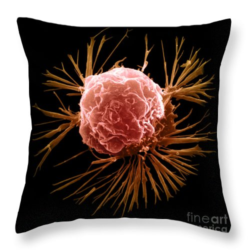 Sem Throw Pillow featuring the photograph Breast Cancer Cell by Science Source