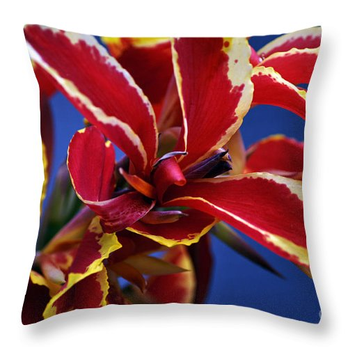 Clay Throw Pillow featuring the photograph Floral by Clayton Bruster