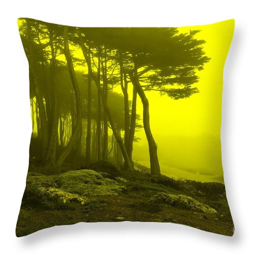 Landscape Throw Pillow featuring the photograph Lands' End by Pusita Gibbs