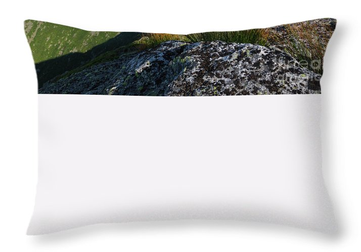 White Mountains Throw Pillow featuring the photograph Mount Washington New Hampshire Usa by Erin Paul Donovan