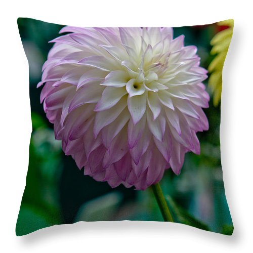 Flower Throw Pillow featuring the photograph Pink Dahlia by Paul Slebodnick