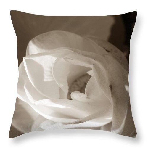 Lotus Throw Pillow featuring the photograph Softly by Amanda Barcon