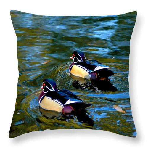 Clay Throw Pillow featuring the photograph Wood Duck by Clayton Bruster