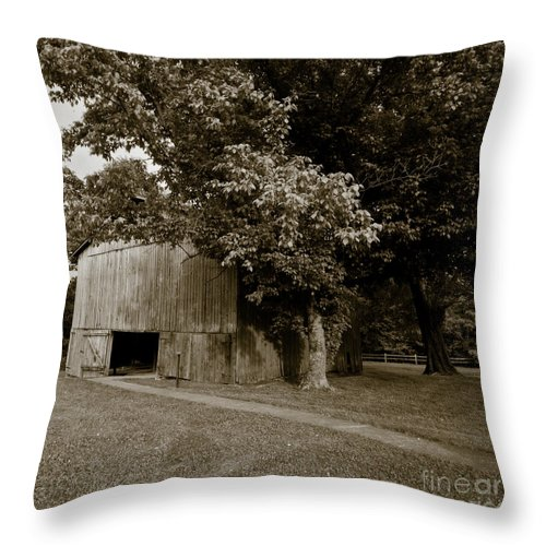 Allen Throw Pillow featuring the photograph Tennessee Country by Avril Christophe